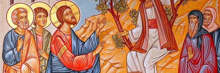 Воскресенье 14-го февраля 2021— Неделя о Закхее